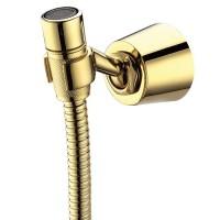 شیلنگ توالت طلایی کرومات