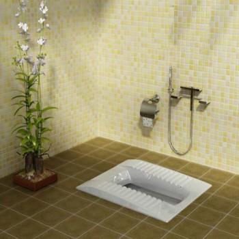 توالت زمینی لوسیا گلسار فارس